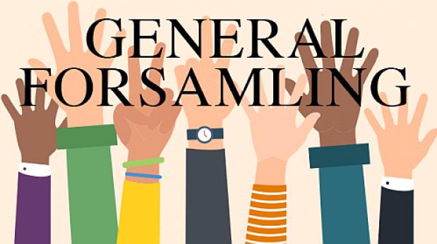 Generalforsamling 2021 (aflyst)